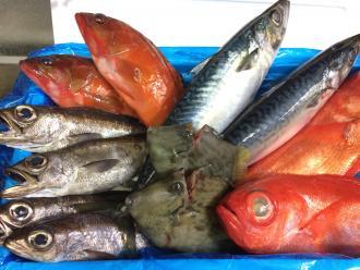 毎日市場から直送した鮮魚をぜいたくに盛っています。